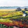 Early Morning - Marshes of St. Simmons